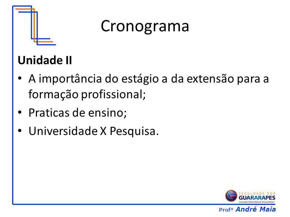 Profº André Maia Unidade II A importância do estágio a da extensão para a formação profissional; Praticas de ensino; Universidade X Pesquisa.
