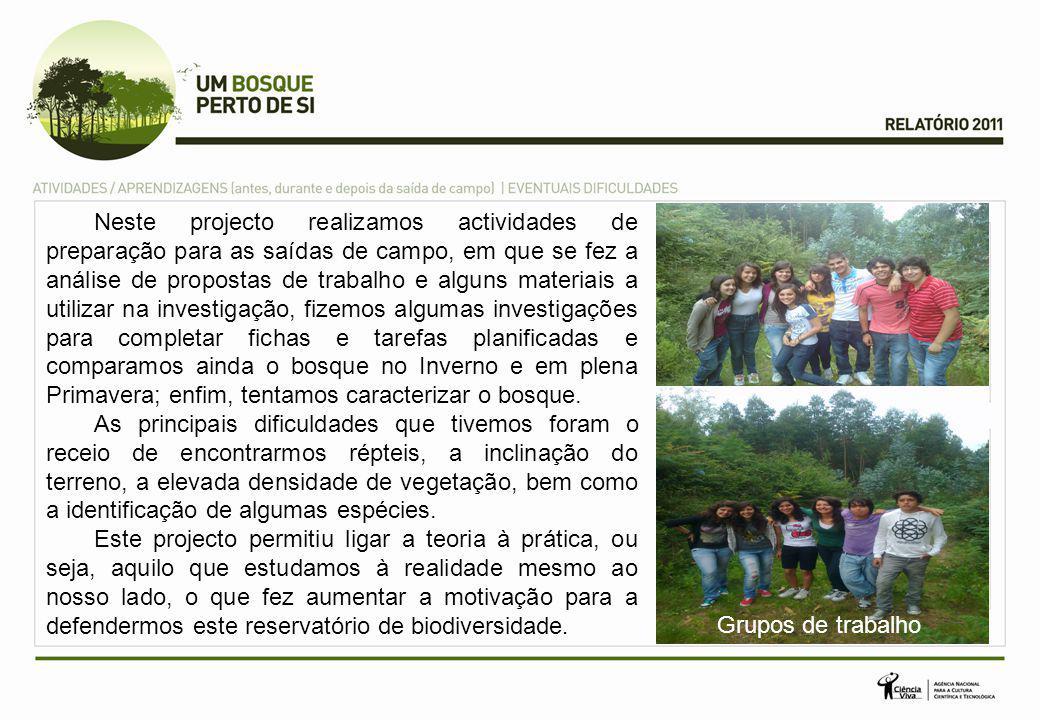 Para divulgarmos o projecto mostrando a importância da floresta nacional como reservatório da biodiversidade, resolvemos fazer um cartaz.