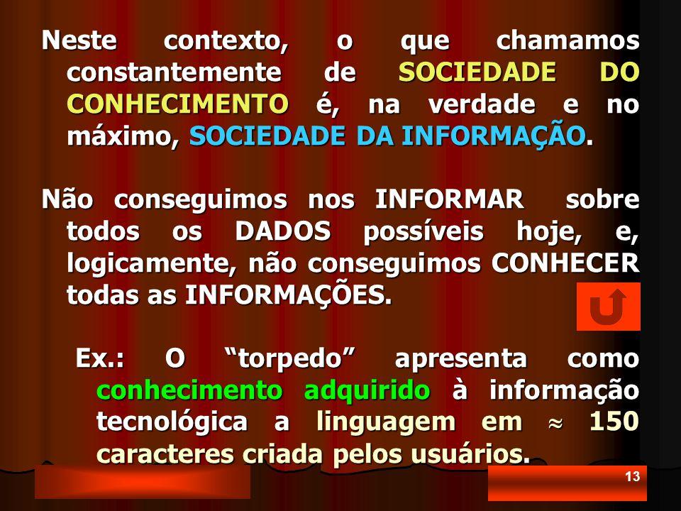 13 Neste contexto, o que chamamos constantemente de SOCIEDADE DO CONHECIMENTO é, na verdade e no máximo, SOCIEDADE DA INFORMAÇÃO.