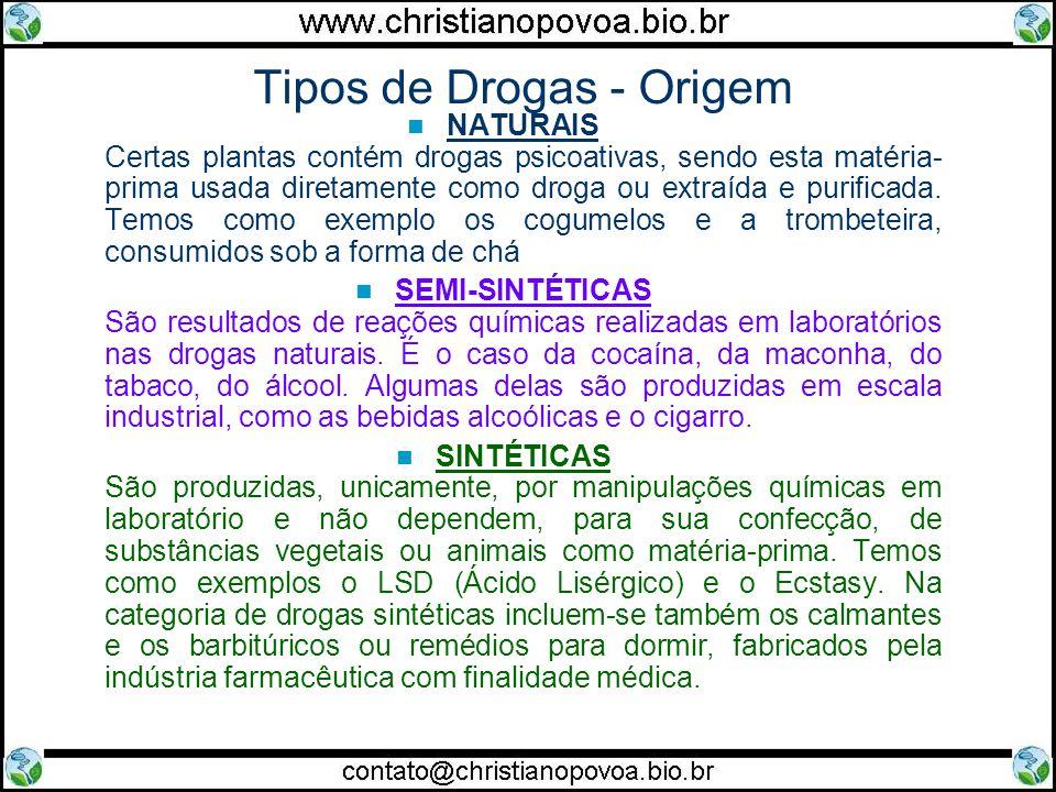 Tipos de Drogas - Origem NATURAIS Certas plantas contém drogas psicoativas, sendo esta matéria- prima usada diretamente como droga ou extraída e purificada.