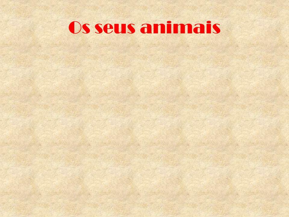 Os seus animais