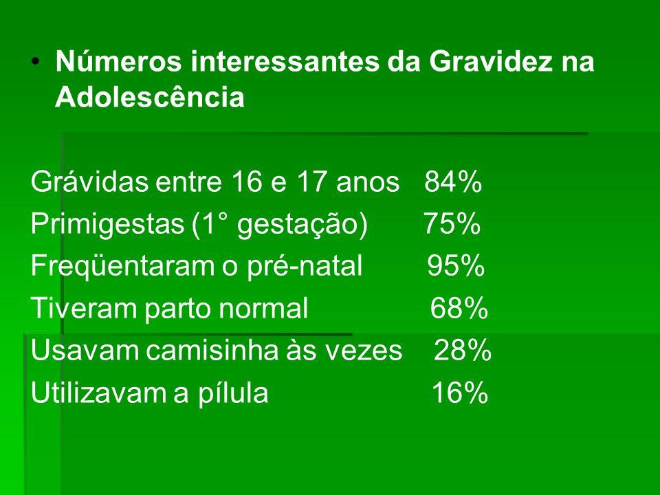 Números interessantes da Gravidez na Adolescência Grávidas entre 16 e 17 anos 84% Primigestas (1° gestação) 75% Freqüentaram o pré-natal 95% Tiveram p