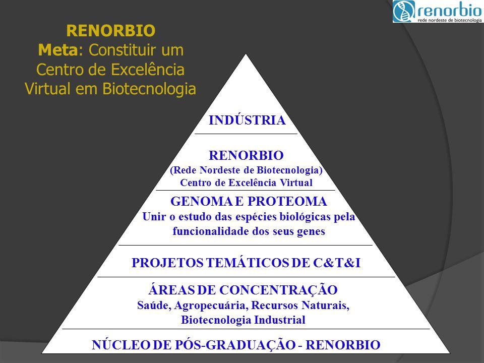 NÚCLEO DE PÓS-GRADUAÇÃO - RENORBIO ÁREAS DE CONCENTRAÇÃO Saúde, Agropecuária, Recursos Naturais, Biotecnologia Industrial PROJETOS TEMÁTICOS DE C&T&I GENOMA E PROTEOMA Unir o estudo das espécies biológicas pela funcionalidade dos seus genes RENORBIO (Rede Nordeste de Biotecnologia) Centro de Excelência Virtual INDÚSTRIA RENORBIO Meta: Constituir um Centro de Excelência Virtual em Biotecnologia