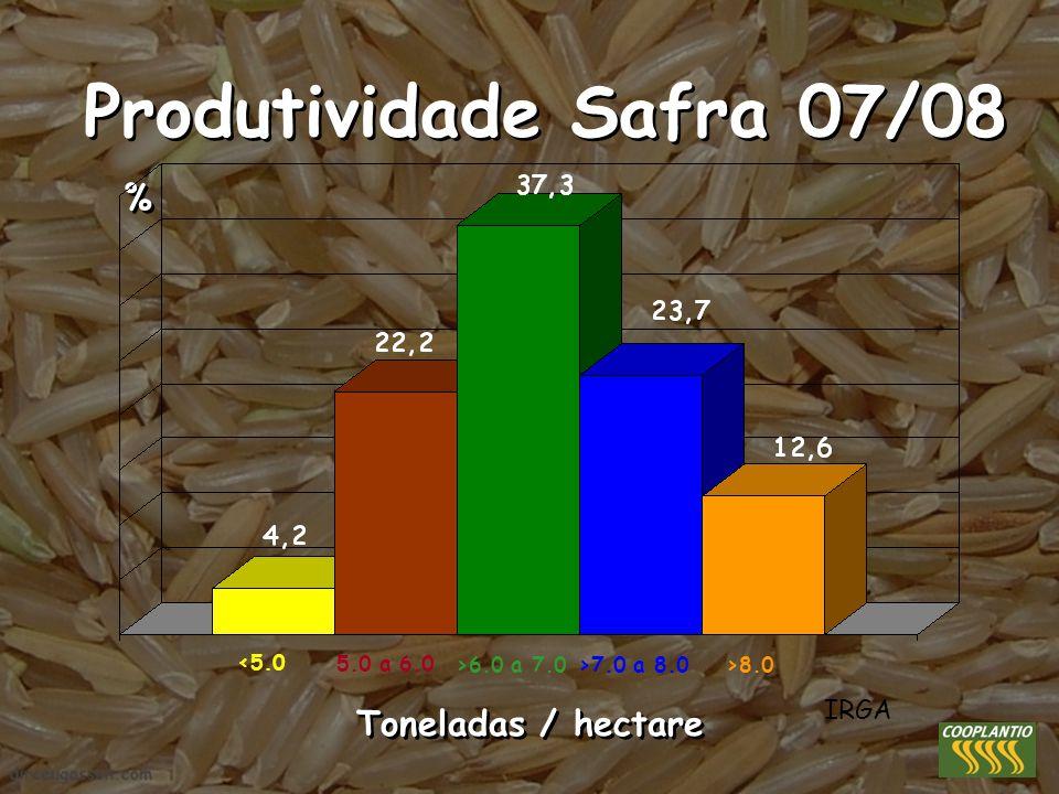 Produtividade Safra 07/08 % % Toneladas / hectare IRGA <5.0 5.0 a 6.0 >6.0 a 7.0>7.0 a 8.0>8.0
