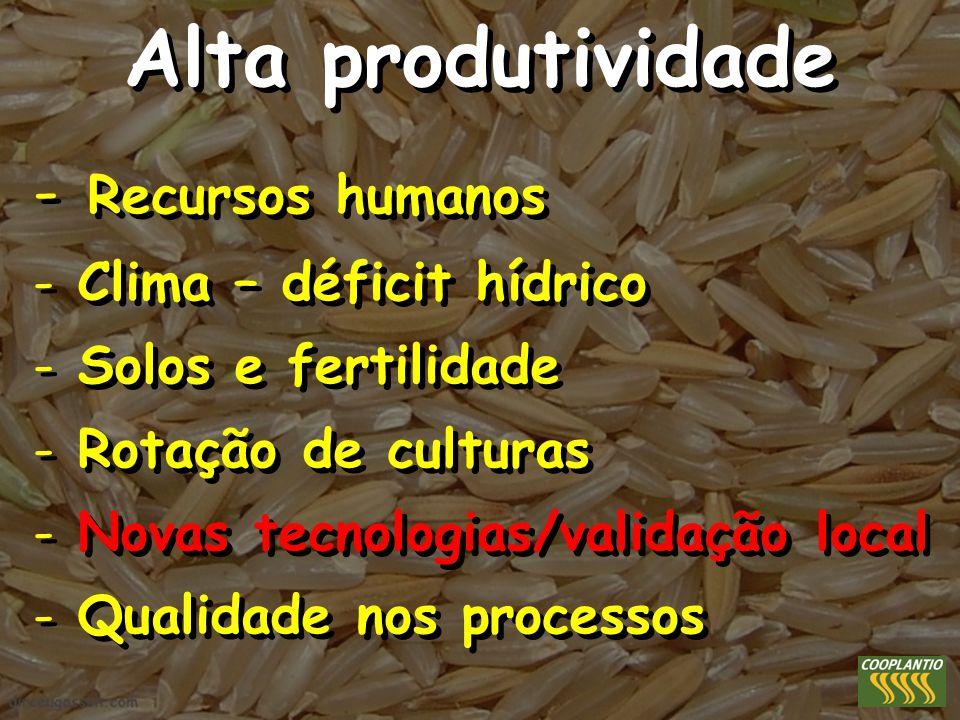 Alta produtividade - Recursos humanos - Clima – déficit hídrico - Solos e fertilidade - Rotação de culturas - Novas tecnologias/validação local - Qual