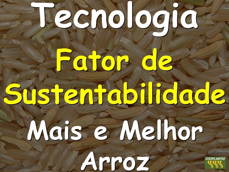 Tecnologia Fator de Sustentabilidade Mais e Melhor Arroz