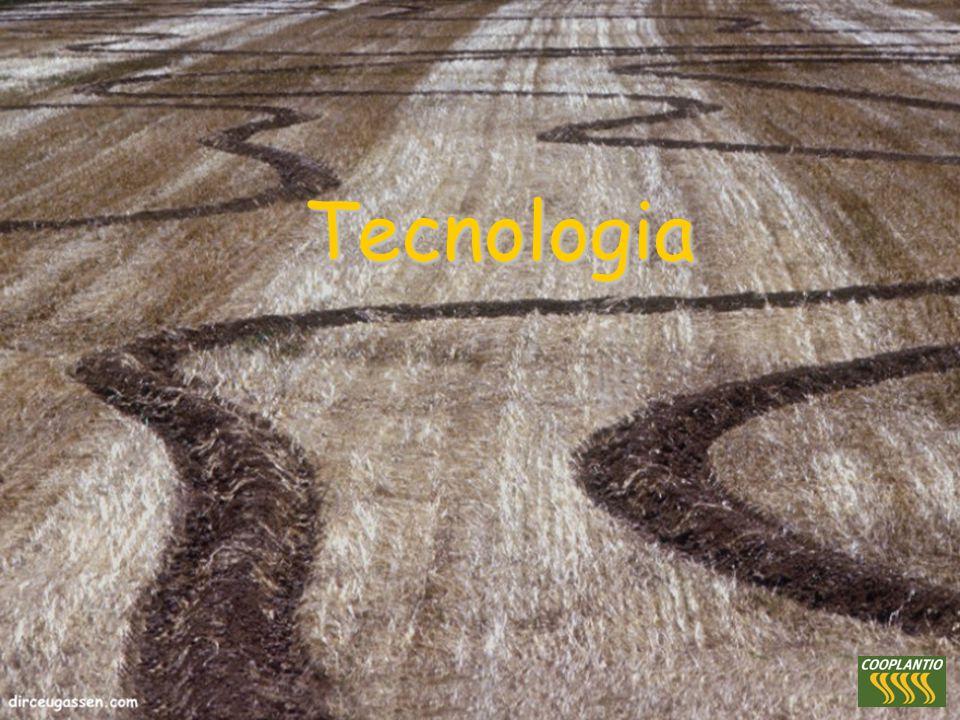 Propósito: converter conhecimento em sustentabilidade Propósito: converter conhecimento em sustentabilidade