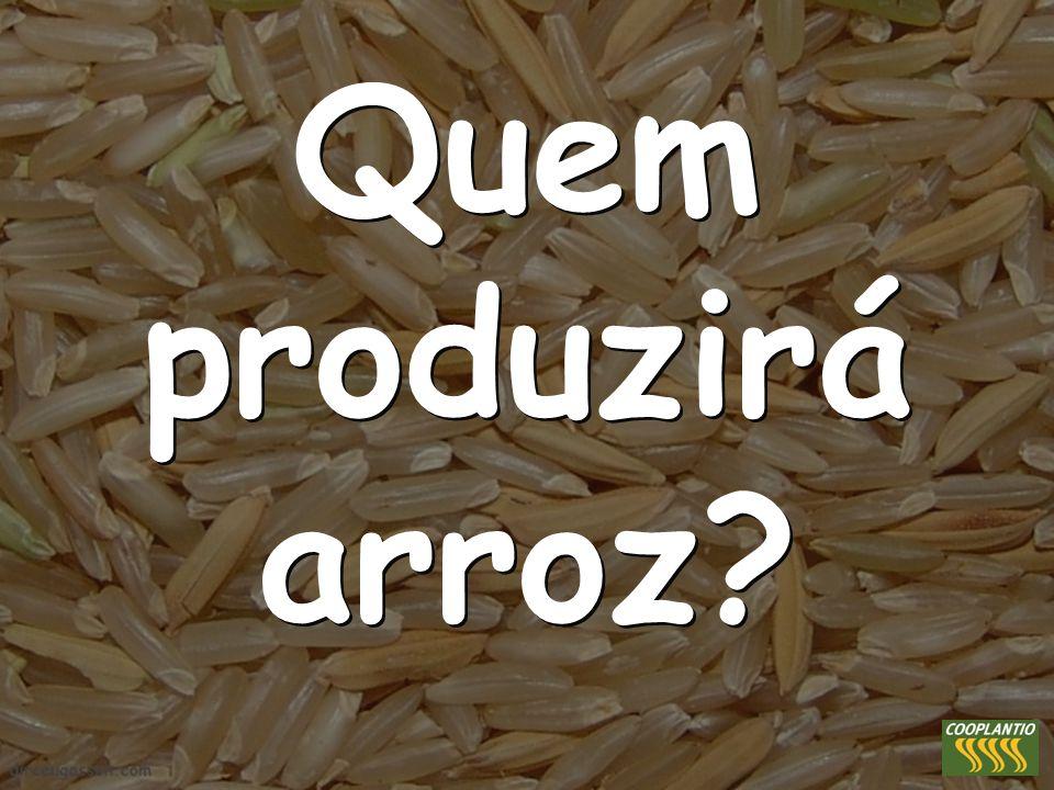 Quem produzirá arroz?