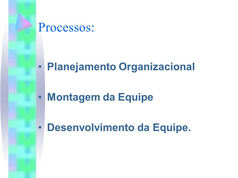 Processos: Planejamento Organizacional Montagem da Equipe Desenvolvimento da Equipe.