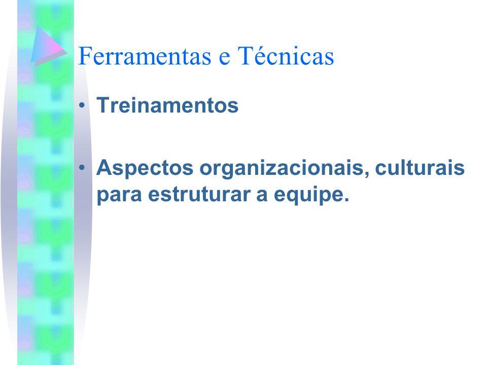 Ferramentas e Técnicas Treinamentos Aspectos organizacionais, culturais para estruturar a equipe.