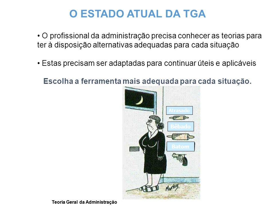 Teoria Geral da Administração O profissional da administração precisa conhecer as teorias para ter à disposição alternativas adequadas para cada situa