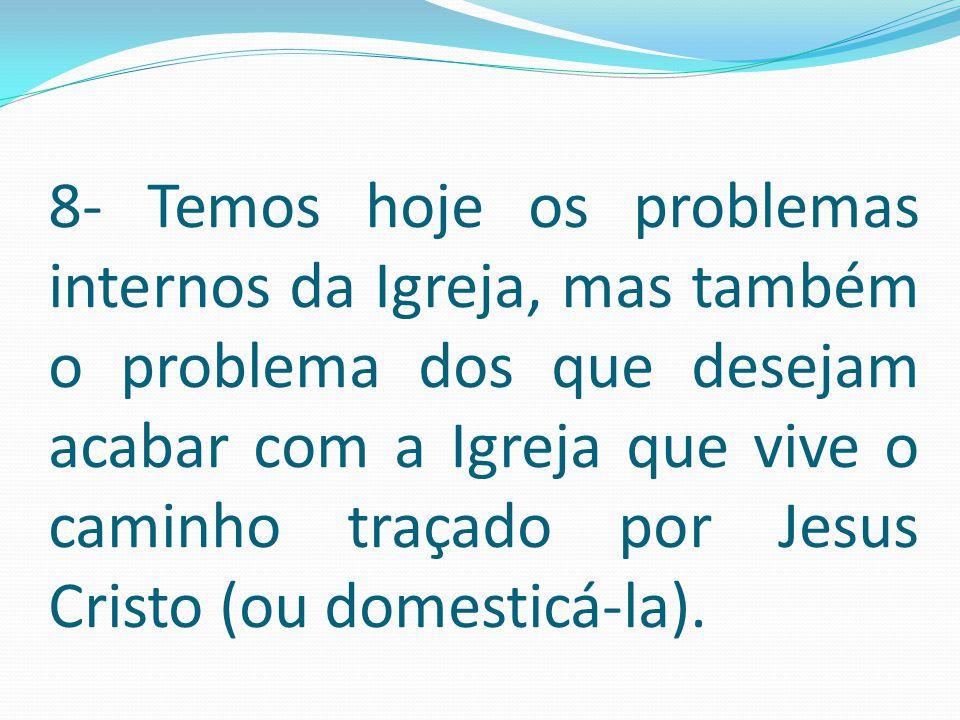 8- Temos hoje os problemas internos da Igreja, mas também o problema dos que desejam acabar com a Igreja que vive o caminho traçado por Jesus Cristo (