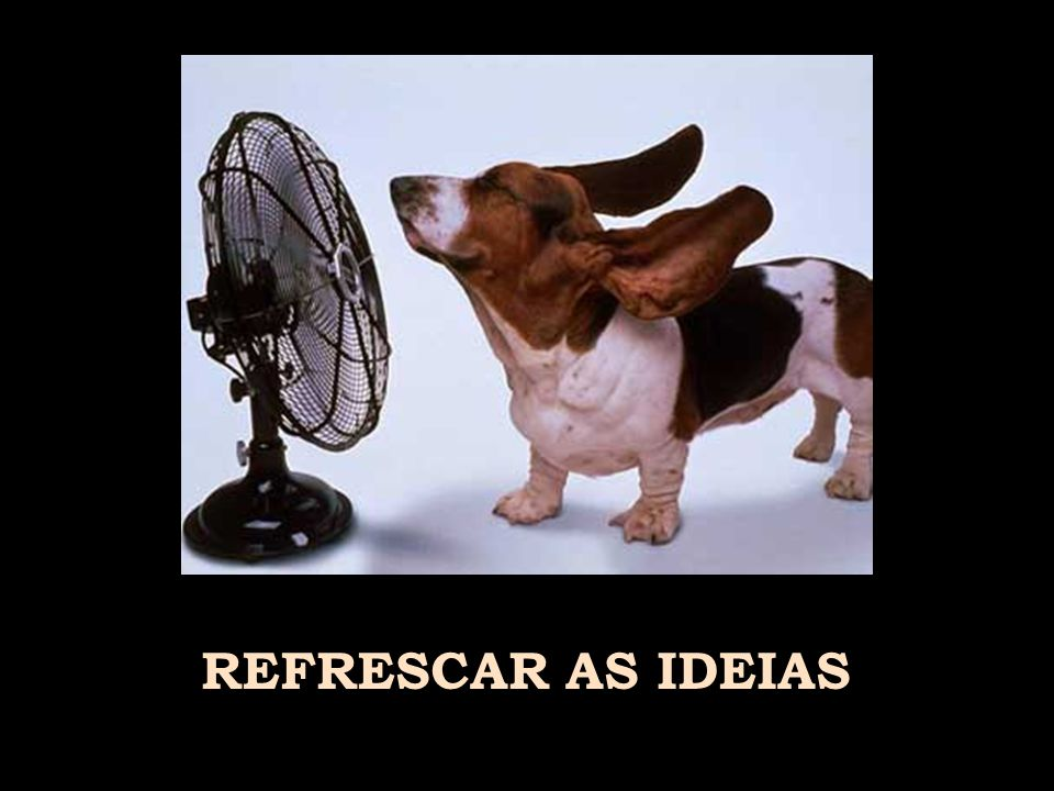 REFRESCAR AS IDEIAS