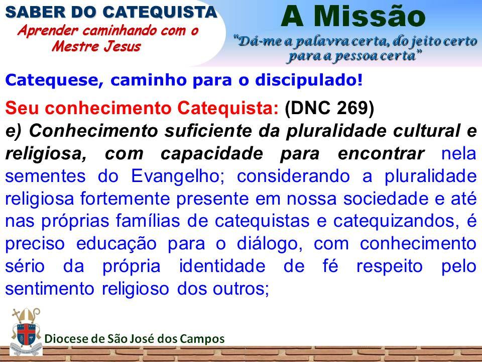 Catequese, caminho para o discipulado! Seu conhecimento Catequista: (DNC 269) e) Conhecimento suficiente da pluralidade cultural e religiosa, com capa