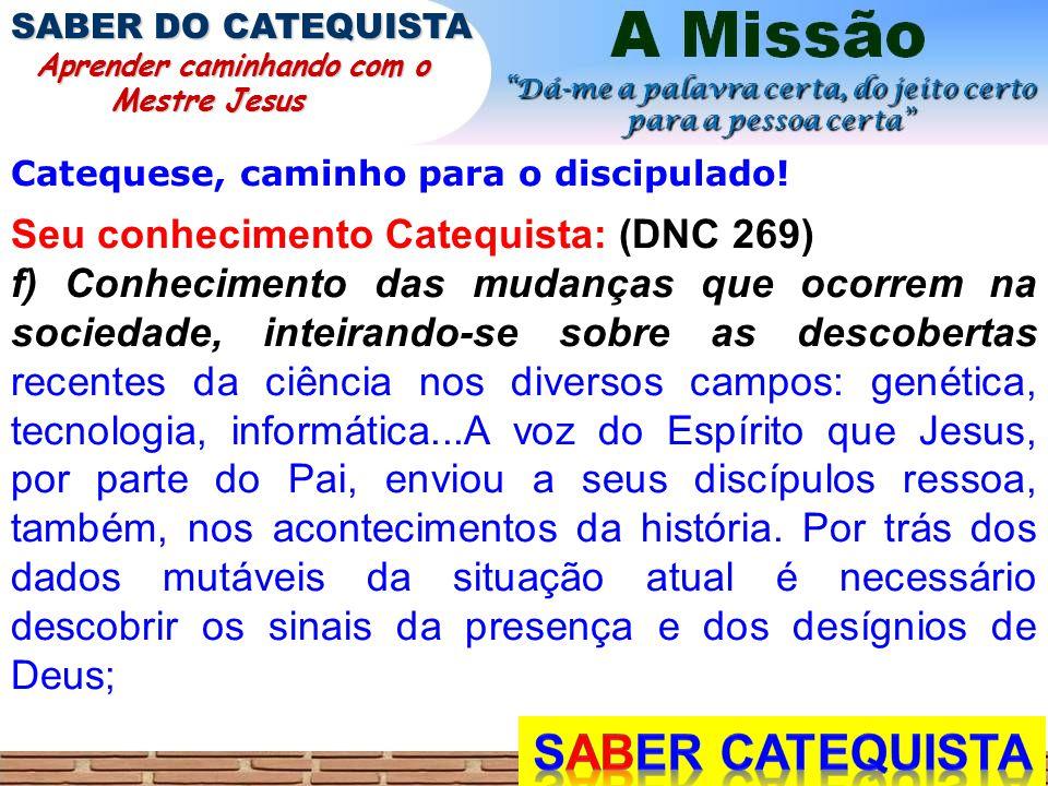 Catequese, caminho para o discipulado! Seu conhecimento Catequista: (DNC 269) f) Conhecimento das mudanças que ocorrem na sociedade, inteirando-se sob
