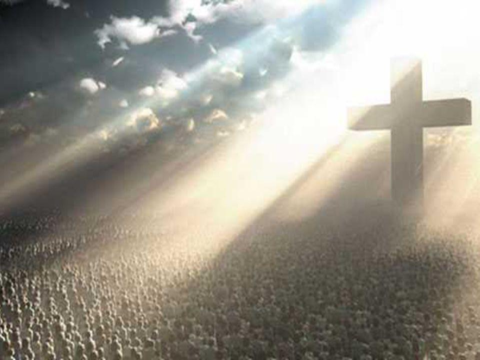 - Precisa FAZER a vontade do Pai A palavra de Jesus vivida com fidelidade deve ser a rocha firme sobre a qual construímos a nossa vida cristã. Deve se
