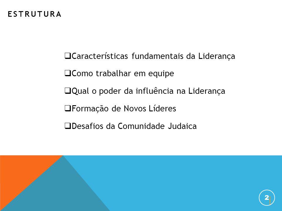 ESTRUTURA  Características fundamentais da Liderança  Como trabalhar em equipe  Qual o poder da influência na Liderança  Formação de Novos Líderes