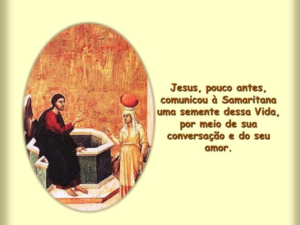 """Jesus considera como seu alimento fazer a vontade do Pai, porque, atuando-a, """"assimilando-a"""", """"alimentando-se dela"""", identificando-se com ela, recebe"""