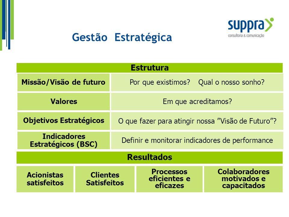 Missão/Visão de futuroPor que existimos? Qual o nosso sonho? Estrutura Acionistas satisfeitos Clientes Satisfeitos Processos eficientes e eficazes Col