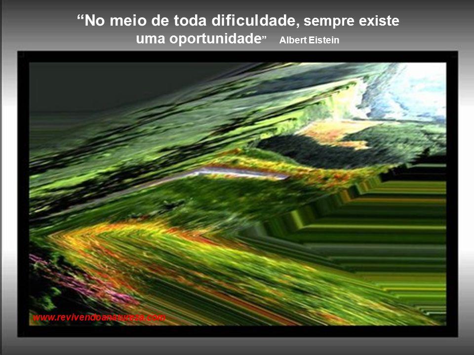 Um dos maiores milagres de Deus é permitir que pessoas simples e comuns possam transmitir coisas incomuns, fortes e ricas de sabedoria. www.revivendoanatureza.com