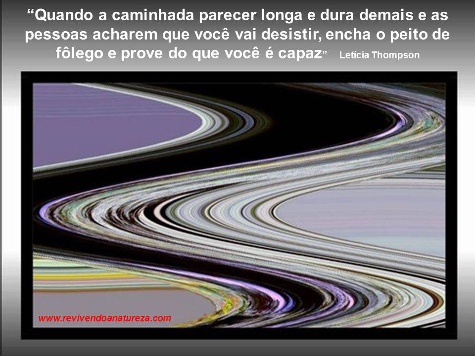 No meio de toda dificuldade, sempre existe uma oportunidade Albert Eistein www.revivendoanatureza.com