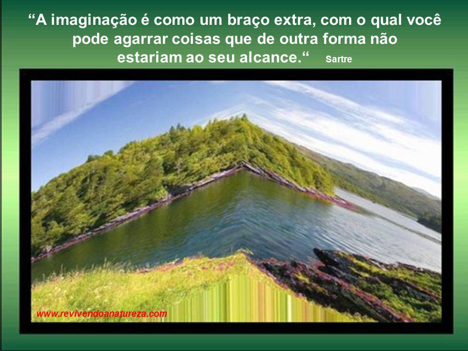 O que o homem não pode manipular flui na arte mais bela de viver: o amor Érica Morais www.revivendoanatureza.com