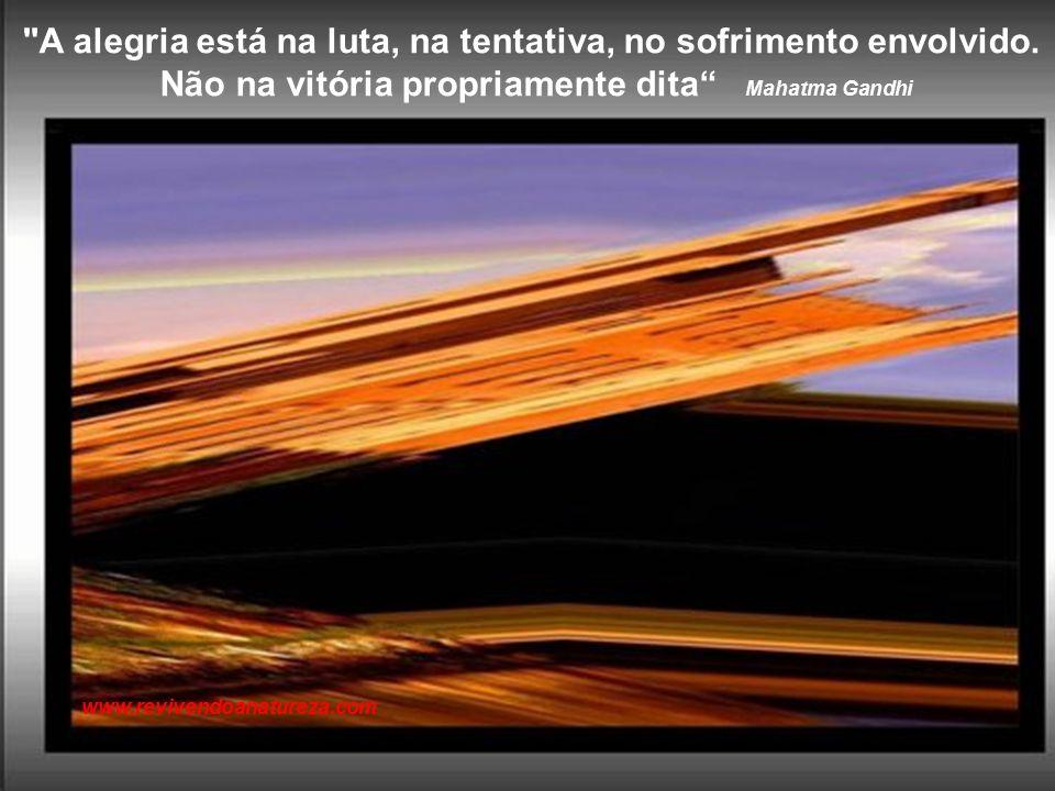 """""""A imaginação é como um braço extra, com o qual você pode agarrar coisas que de outra forma não estariam ao seu alcance."""" Sartre www.revivendoanaturez"""