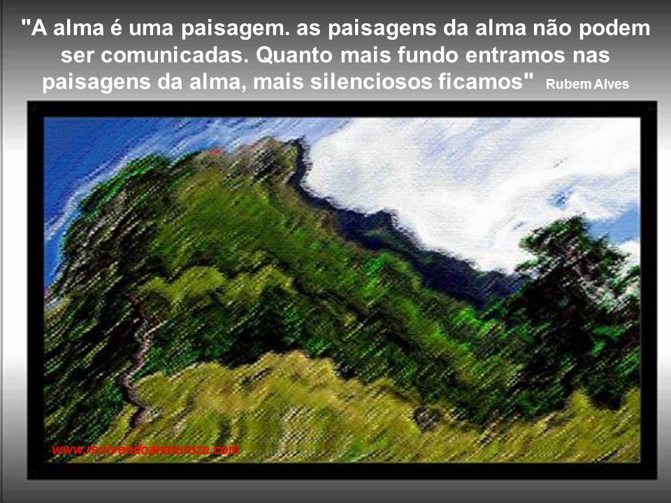 A vida é a arte do encontro, embora haja tanto desencontro pela vida Vinícius de Moraes www.revivendoanatureza.com