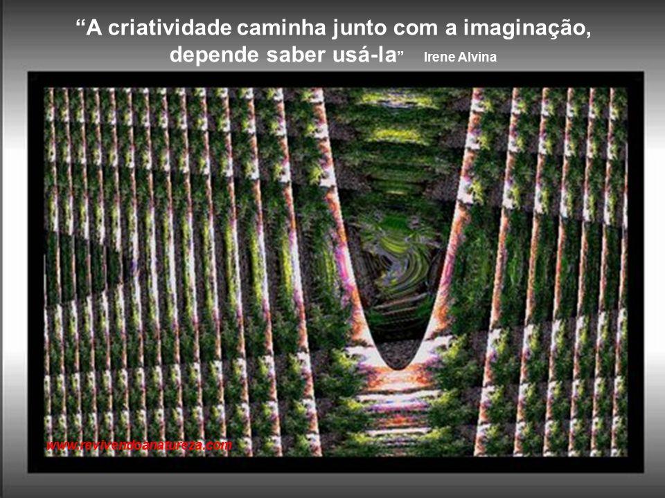 A vida está cheia de desafios que se aproveitados de forma criativa, transformam-se em oportunidades (Maxwell Maltez) www.revivendoanatureza.com