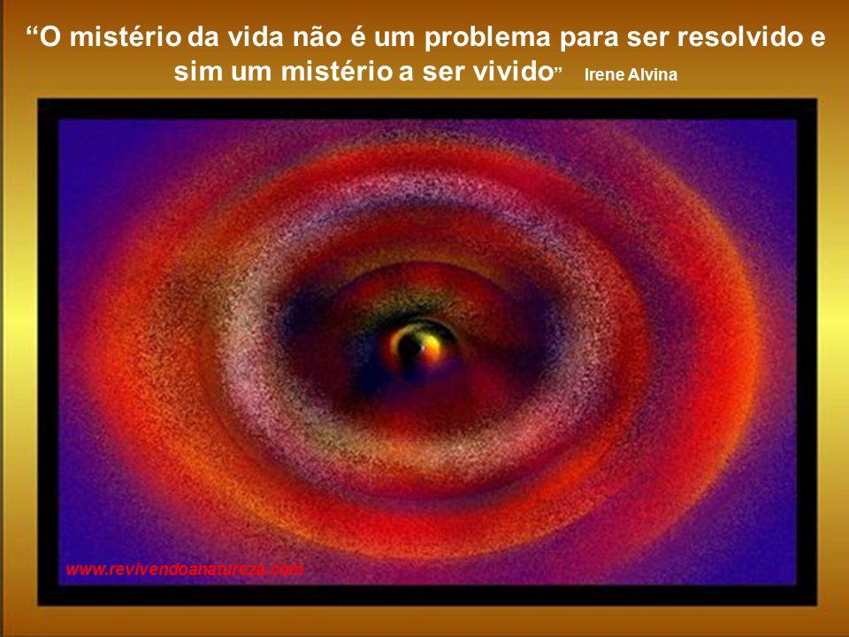 A arte pertence àqueles que acreditam na beleza dos seus sonhos Irene Alvina www.revivendoanatureza.com