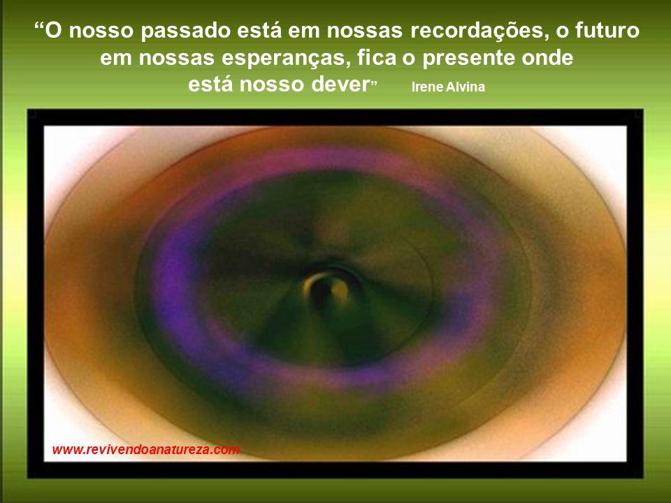 O nosso passado está em nossas recordações, o futuro em nossas esperanças, fica o presente onde está nosso dever Irene Alvina www.revivendoanatureza.com