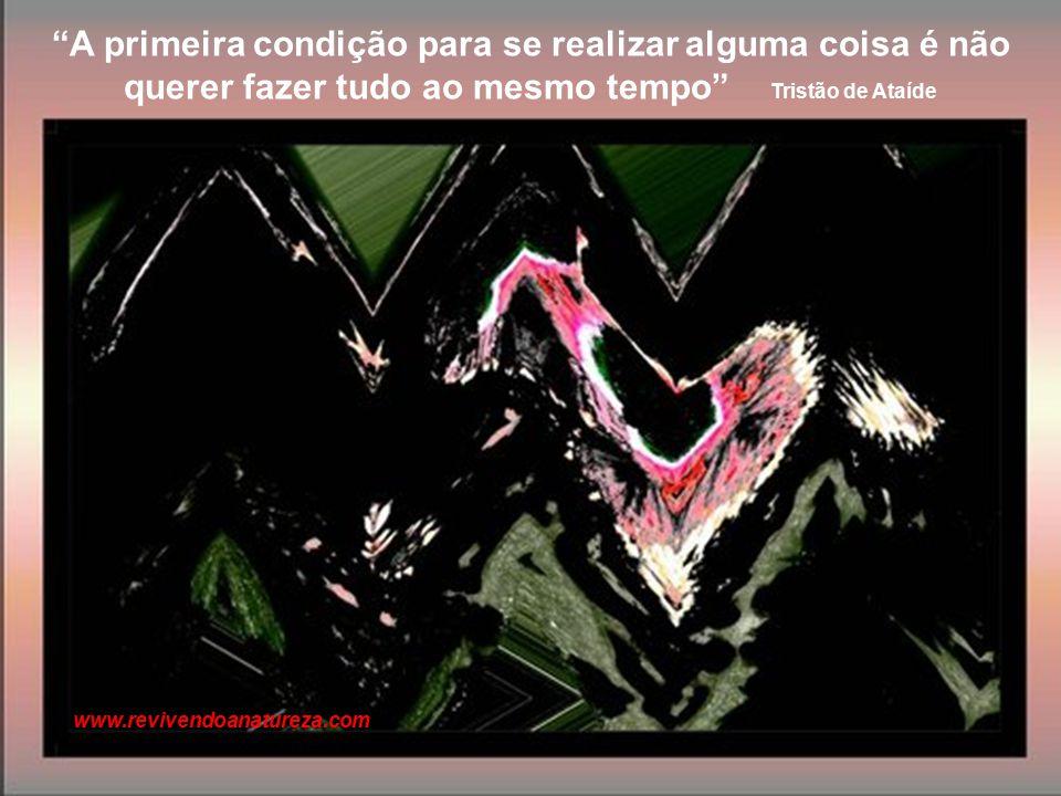 A arte consiste em fazer os outros sentir o que nós sentimos, em os libertar deles mesmos, propondo-lhes a nossa personalidade para especial libertação Fernando Pessoa www.revivendoanatureza.com