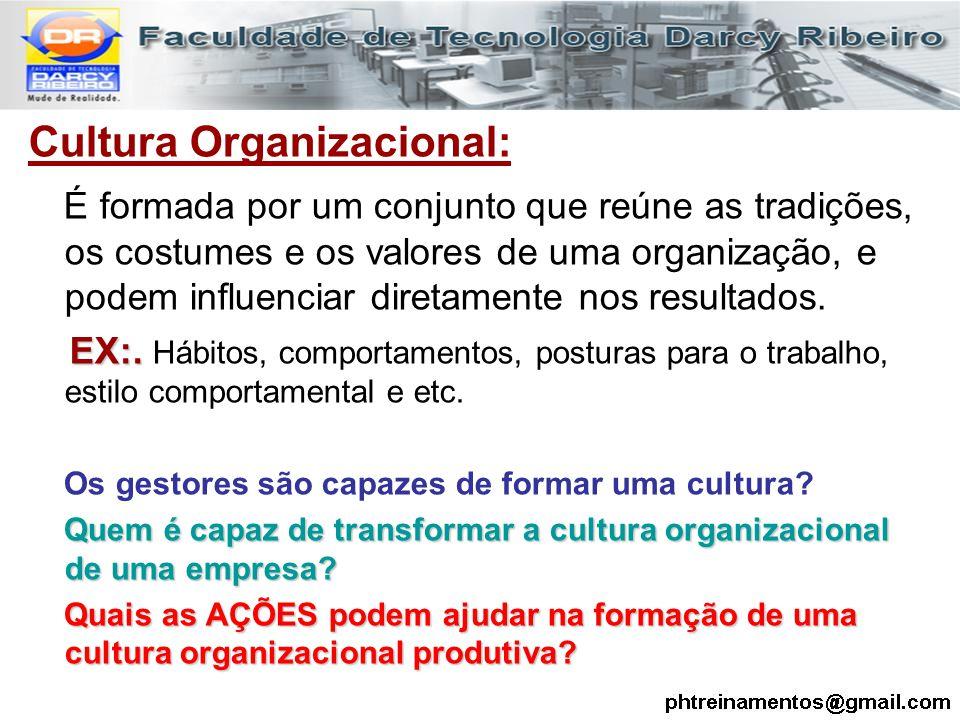 Cultura Organizacional: É formada por um conjunto que reúne as tradições, os costumes e os valores de uma organização, e podem influenciar diretamente
