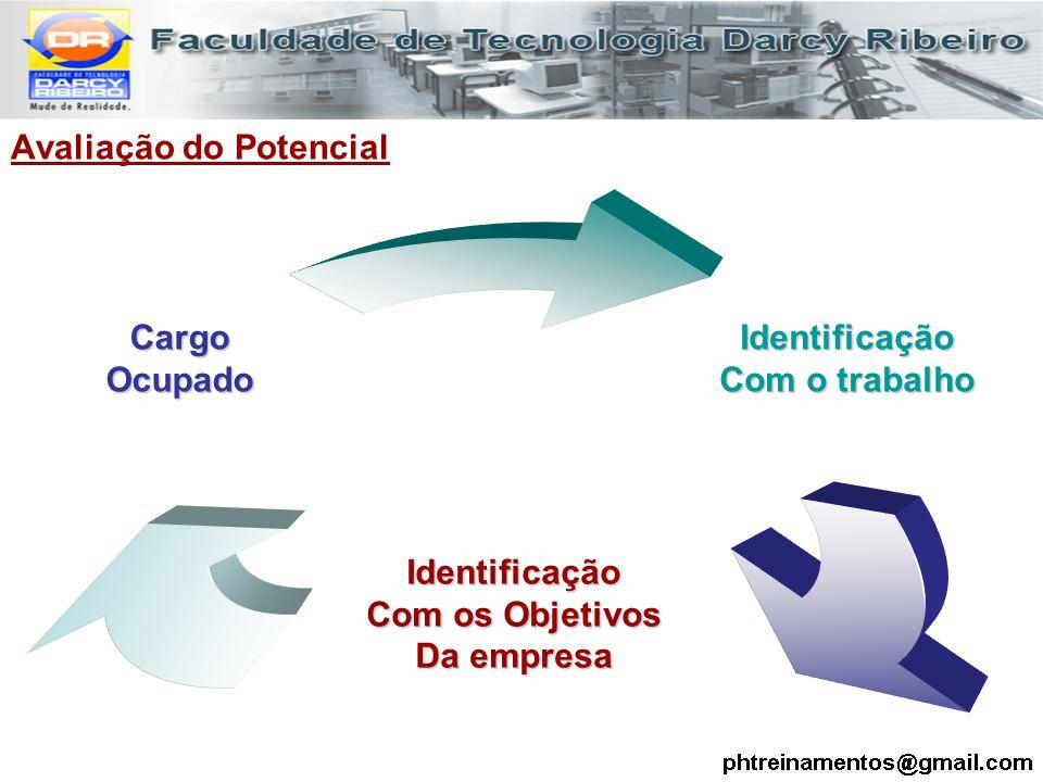Avaliação do PotencialIdentificação Com o trabalho Identificação Com os Objetivos Da empresa CargoOcupado