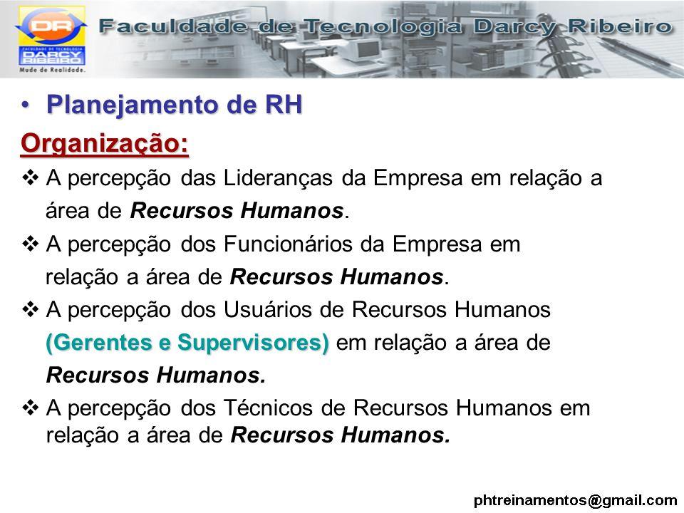 Planejamento de RHPlanejamento de RHOrganização:  A percepção das Lideranças da Empresa em relação a área de Recursos Humanos.  A percepção dos Func