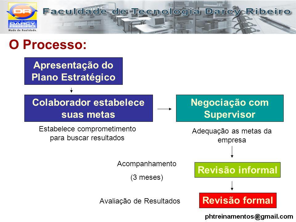 O Processo: Apresentação do Plano Estratégico Colaborador estabelece suas metas Negociação com Supervisor Revisão formal Revisão informal Estabelece c