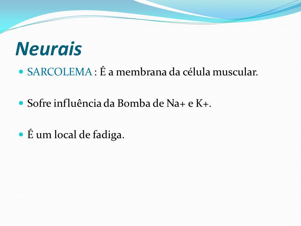 Neurais SARCOLEMA : É a membrana da célula muscular. Sofre influência da Bomba de Na+ e K+. É um local de fadiga.