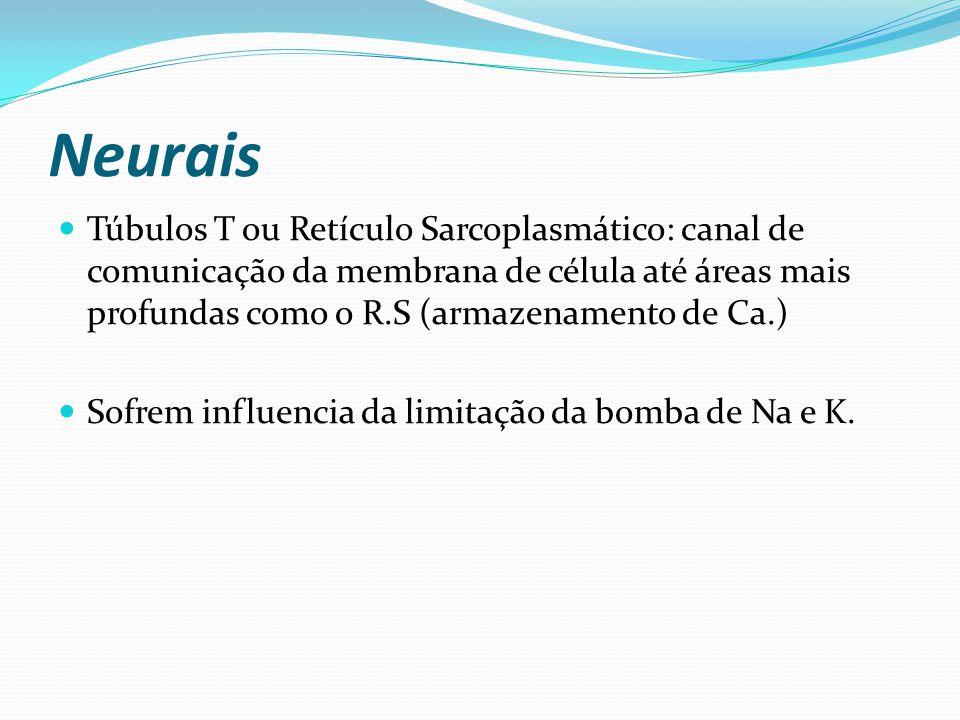 Neurais Túbulos T ou Retículo Sarcoplasmático: canal de comunicação da membrana de célula até áreas mais profundas como o R.S (armazenamento de Ca.) Sofrem influencia da limitação da bomba de Na e K.