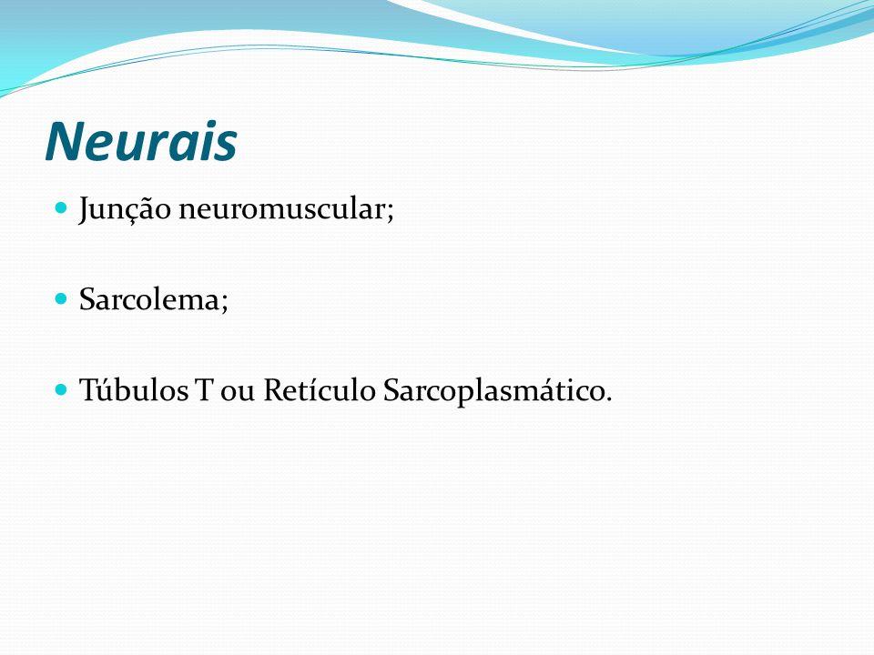 Neurais Junção neuromuscular; Sarcolema; Túbulos T ou Retículo Sarcoplasmático.