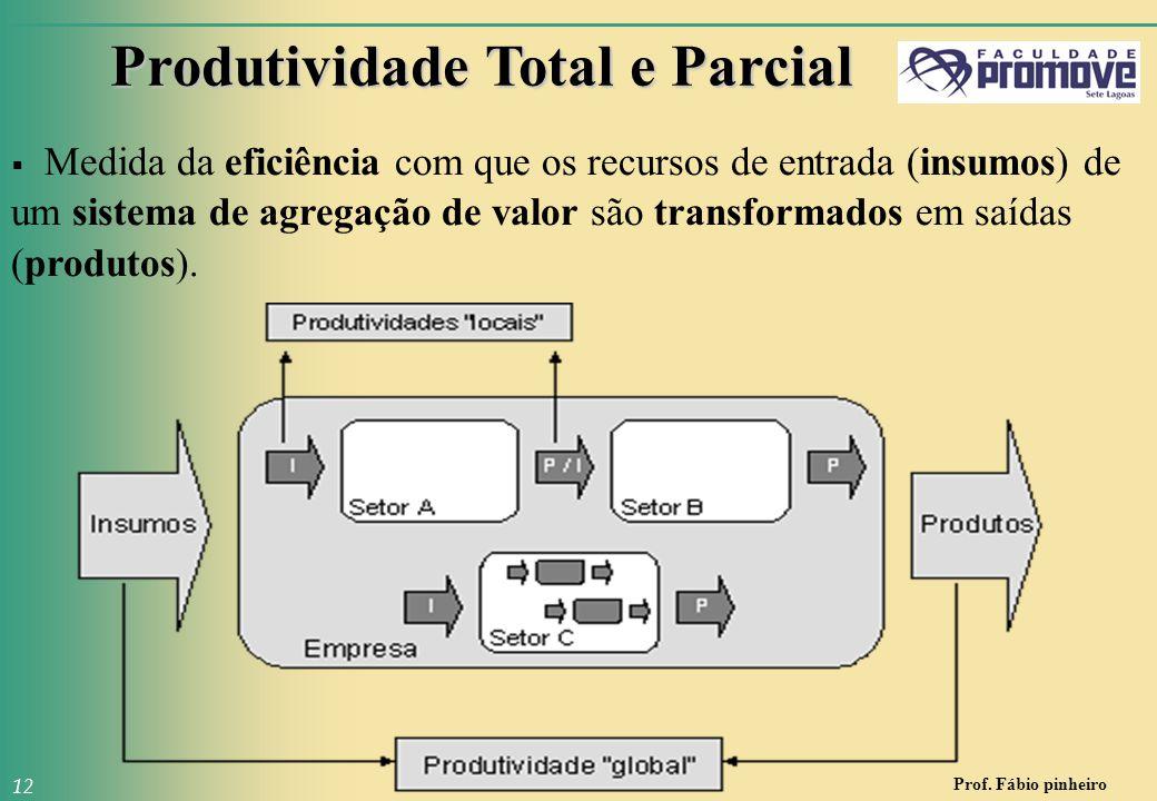 Prof. Fábio pinheiro 12 Produtividade Total e Parcial  Medida da eficiência com que os recursos de entrada (insumos) de um sistema de agregação de va