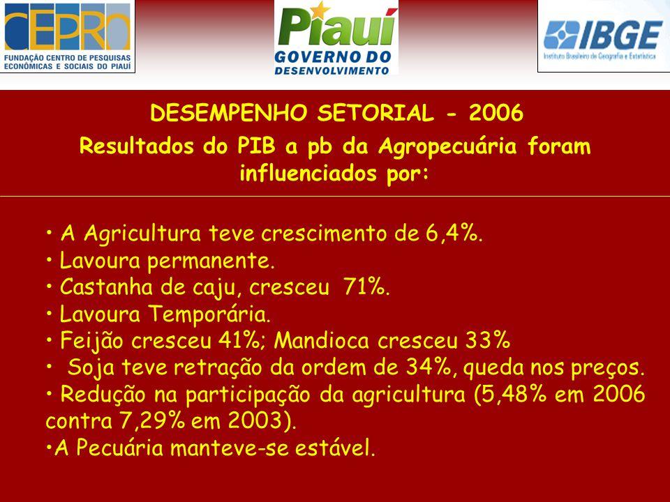 Resultados do PIB a pb da Agropecuária foram influenciados por: DESEMPENHO SETORIAL - 2006 A Agricultura teve crescimento de 6,4%. Lavoura permanente.