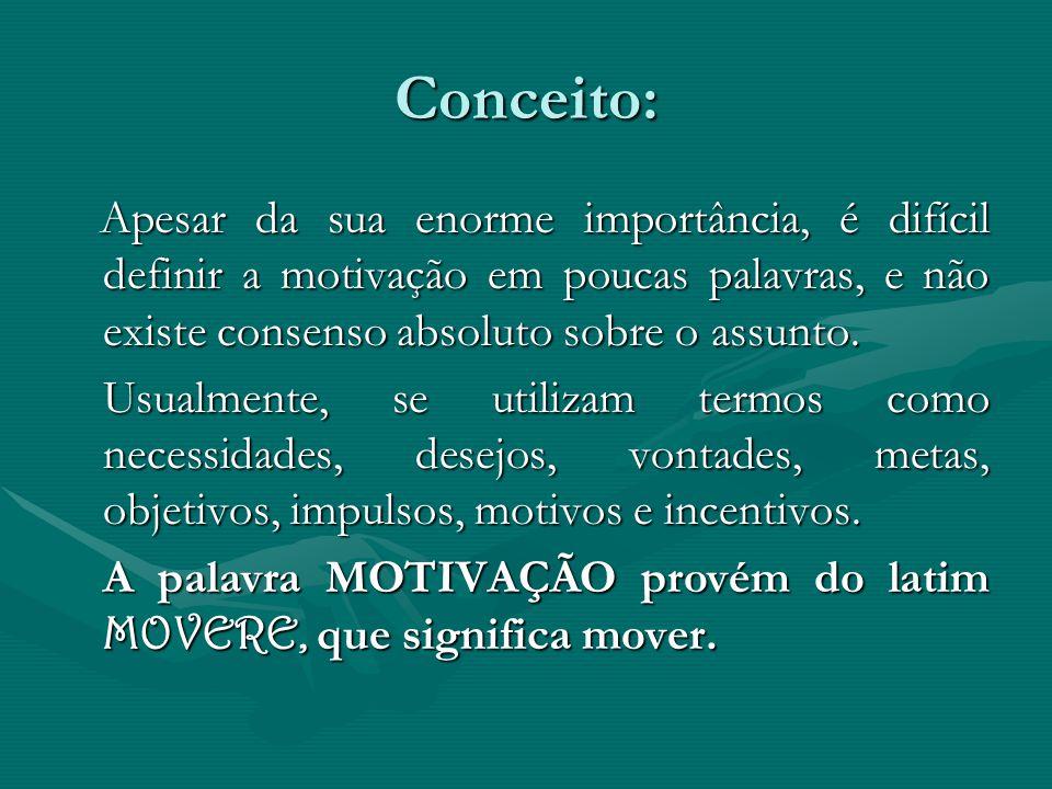 Alguns autores se concentram em alguns fatores que incitam e dirigem as atividades das pessoas.