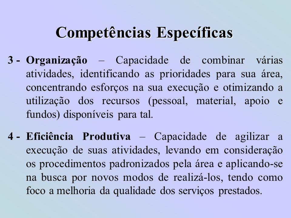 Competências Específicas 3 - Organização – Capacidade de combinar várias atividades, identificando as prioridades para sua área, concentrando esforços