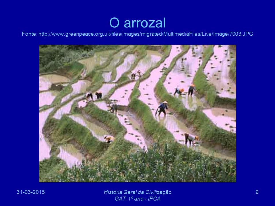 31-03-2015História Geral da Civilização GAT: 1º ano - IPCA 9 O arrozal Fonte: http://www.greenpeace.org.uk/files/images/migrated/MultimediaFiles/Live/