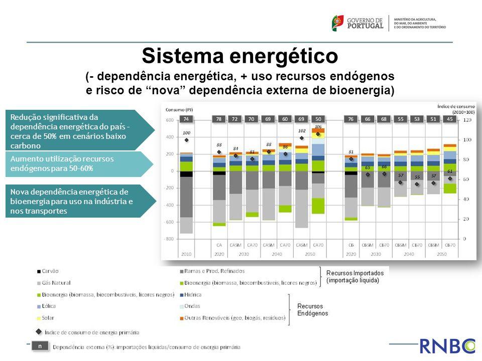 """Sistema energético (- dependência energética, + uso recursos endógenos e risco de """"nova"""" dependência externa de bioenergia) Redução significativa da d"""