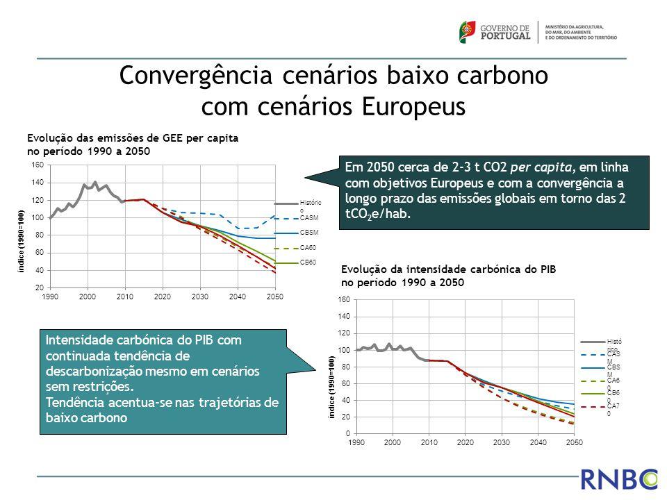 Convergência cenários baixo carbono com cenários Europeus Evolução das emissões de GEE per capita no período 1990 a 2050 Evolução da intensidade carbó