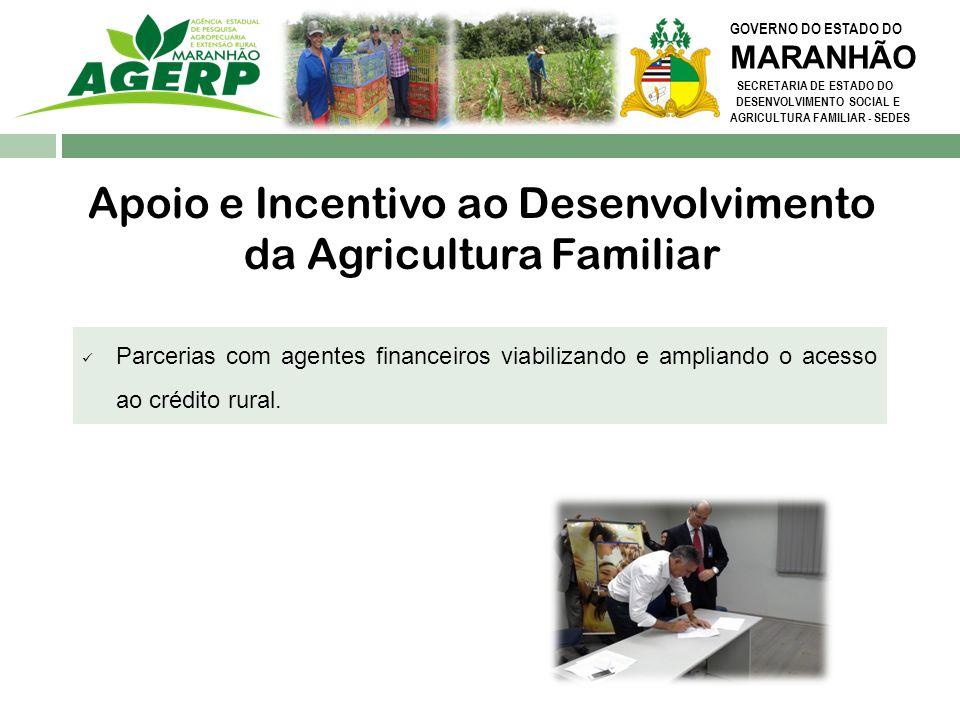GOVERNO DO ESTADO DO MARANHÃO SECRETARIA DE ESTADO DO DESENVOLVIMENTO SOCIAL E AGRICULTURA FAMILIAR - SEDES Parcerias com agentes financeiros viabiliz