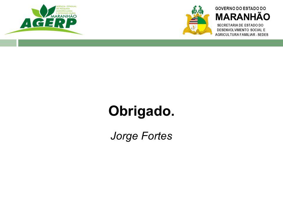 GOVERNO DO ESTADO DO MARANHÃO SECRETARIA DE ESTADO DO DESENVOLVIMENTO SOCIAL E AGRICULTURA FAMILIAR - SEDES Obrigado. Jorge Fortes