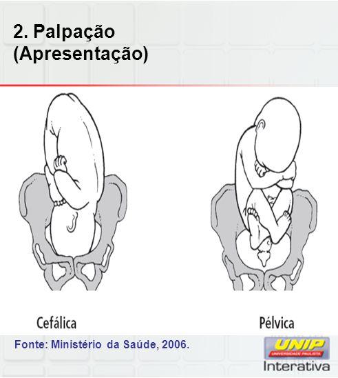2. Palpação (Apresentação) Fonte: Ministério da Saúde, 2006.