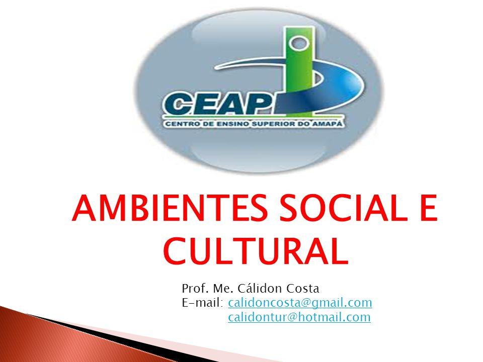 AMBIENTES SOCIAL E CULTURAL Prof.Me.
